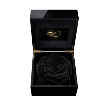 Luxury video flower box Magna with a XL Preserved Black Rose