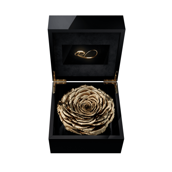 Luxury video flower box Magna with a XL Preserved Gold Rose
