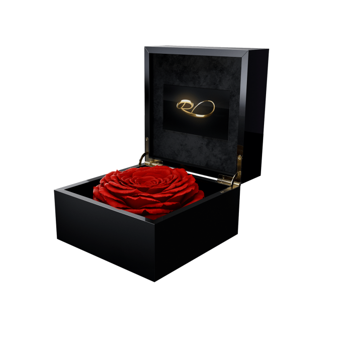 Luxury LCD display flower box Magna with a XL Longlife Red Rose